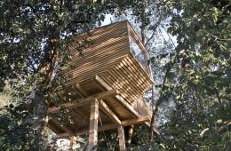 Rok Pezdirc: lesena hiška na drevesu