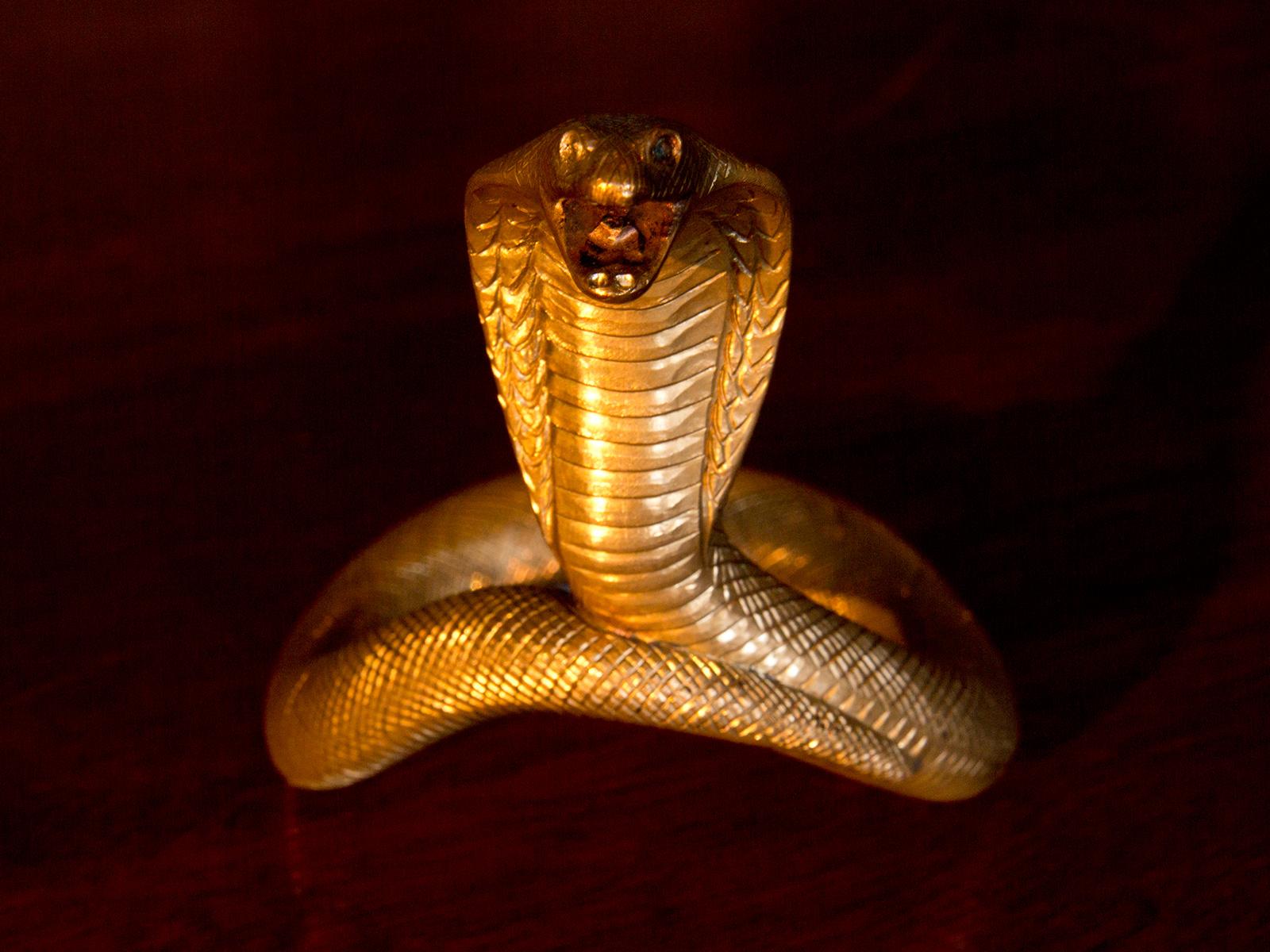 Velv'or King Cobra Gentlemen's Ring