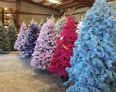 Letošnji božični trend so barvna božična drevesa.