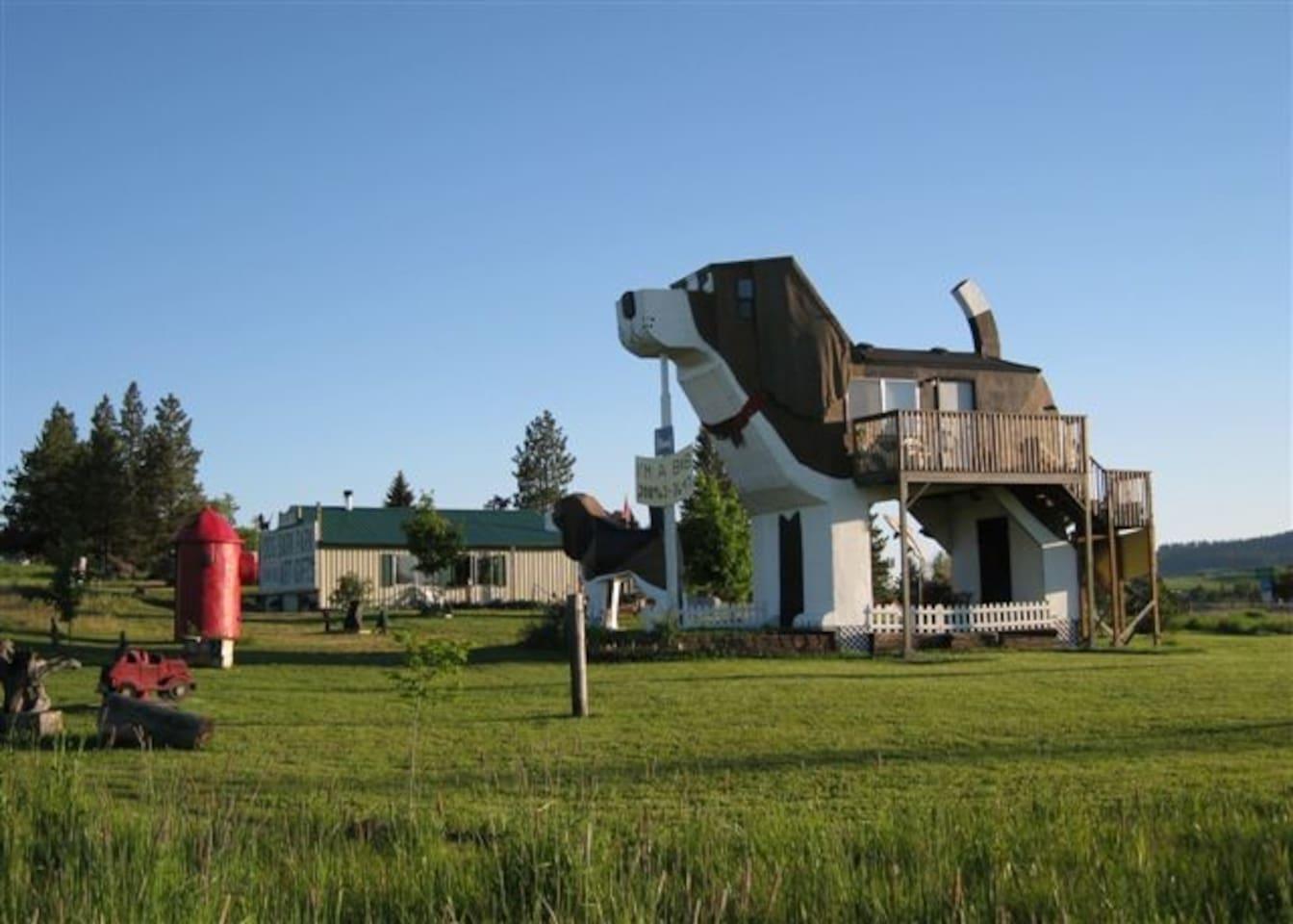 DOG BARK PARK INN, COTTONWOOD (ZDA)