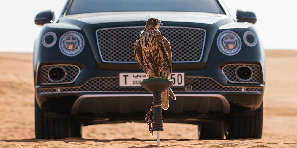 Bentley Bentayga Falconry – najbolj luksuzna ptičja kletka na svetu