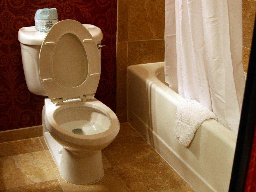 Nesposobni najti WC