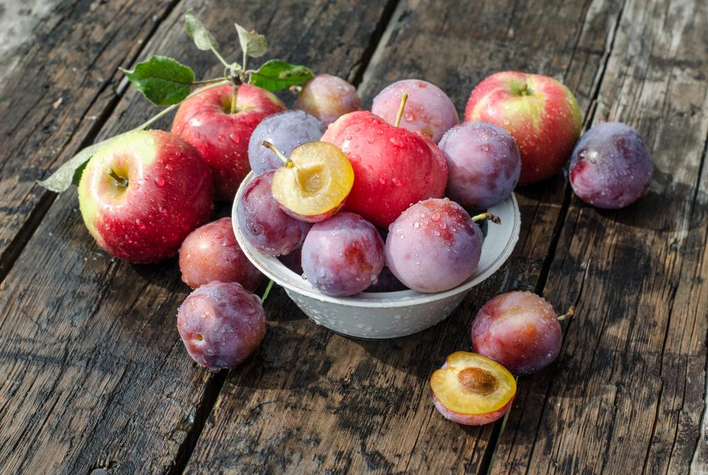 Braniti se ne bi smeli niti jabolk in sliv.