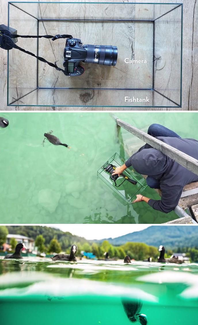 Fotoaparat postavite v akvarij.