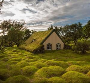 Majhna hiša, pokrita z islandskim mahom