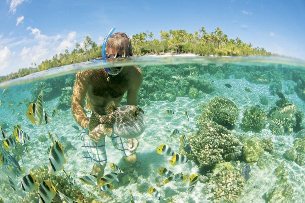 Coral Garden, Francoska Polinezija