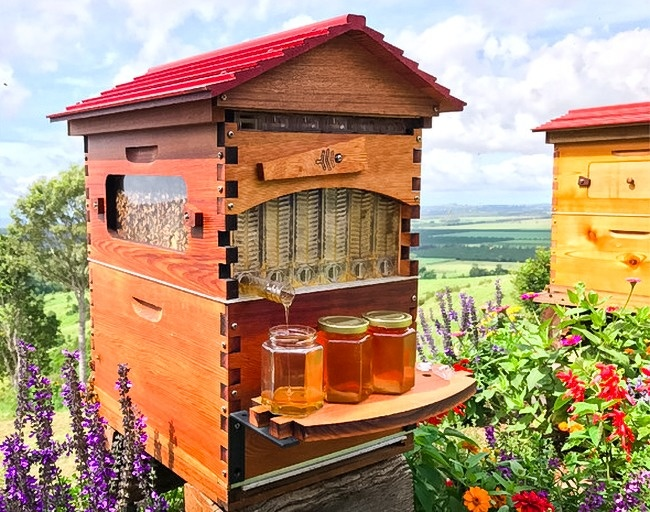 Honey Flow