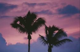 5 otokov, ki jih morate obiskati, če želite res edinstveno izkušnjo
